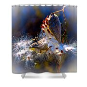 Pod Explosion Shower Curtain