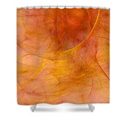 Poetic Emotions Abstract Expressionism Shower Curtain