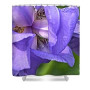 Poetry Of An Iris Shower Curtain