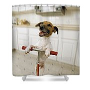 Pogo Dog Shower Curtain