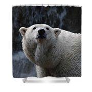 Polar Bear With Waterfall Shower Curtain