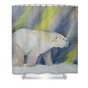 Polar Lights Shower Curtain