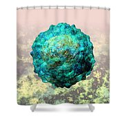 Polio Virus Particle Or Virion Poliovirus 1 Shower Curtain by Russell Kightley
