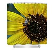 Pollen Laden  Shower Curtain
