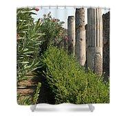 Pompeii Columns 2 Shower Curtain