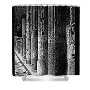 Pompeii Columns Black And White Shower Curtain