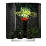 Pompeii Palm Tree Italy Shower Curtain