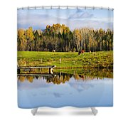 Pond And Cattle Near Mansonville Shower Curtain