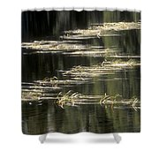 Pond And Grass Abstract Shower Curtain