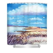 Pond At South Cape Beach Shower Curtain