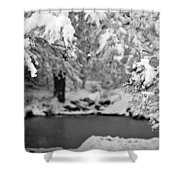 Pond Mystere Shower Curtain