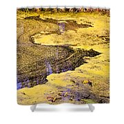 Pond Scum One Shower Curtain