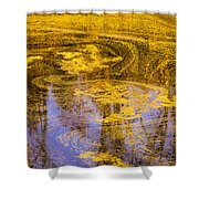 Pond Scum Two Shower Curtain