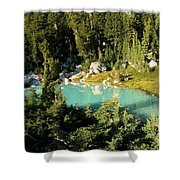Pool In The Forest Shower Curtain