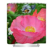 Poppies And Pollinator Shower Curtain