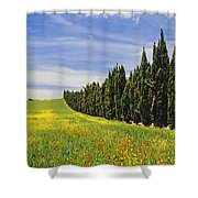 Poppies And Wild Flowers In Wheat Field Shower Curtain