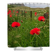 Poppies By The Roadside In Northumberland Shower Curtain