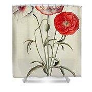 Poppies Corn Shower Curtain