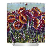 Poppies In My Field Shower Curtain