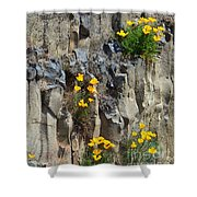 Poppies On The Cliff Shower Curtain