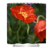 Poppies With Impressionist Effect Shower Curtain