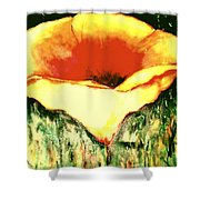 Poppy Cup Of Gold  Shower Curtain