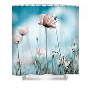 Poppy Flowers 10 Shower Curtain
