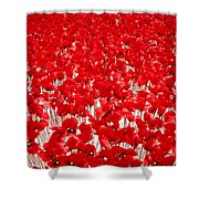 Poppy Meadow ... Shower Curtain