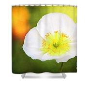 Poppy Of Peace Shower Curtain