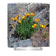 Poppy On The Rocks Shower Curtain