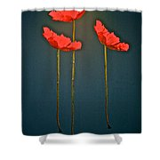 Poppy Power Shower Curtain