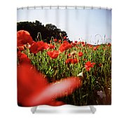 Poppy Stars Shower Curtain
