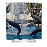 Porpoise Statues   Maui Hawaii Shower Curtain