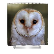 Portrait Of A Barn Owl Shower Curtain