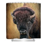 Portrait Of A Buffalo Shower Curtain by Tamyra Ayles