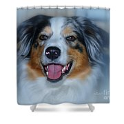 Portrait Of A Dog Lady Shower Curtain