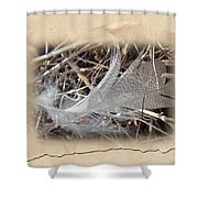 Portrait Of A Feather Shower Curtain