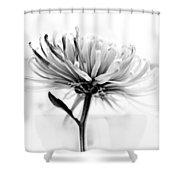 Portrait Of A Flower Shower Curtain