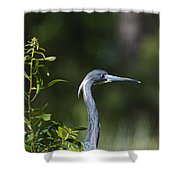 Portrait Of A Heron Shower Curtain