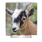 Portrait Of A Pygmy Shower Curtain
