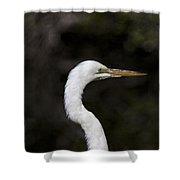 Portrait Of An Egret Shower Curtain