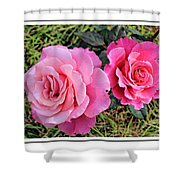 Portrait Of Sister Roses Shower Curtain