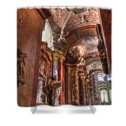 Posnan - St Stanislaus Church Shower Curtain