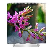 Posteredged Flowers Shower Curtain