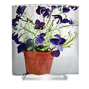 Pot Of Flowers One Shower Curtain