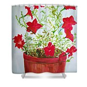 Pot Of Flowers Two Shower Curtain
