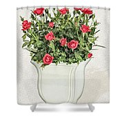 Pot Of Red Roses On Lace Background Shower Curtain