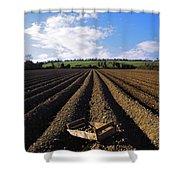 Potato Field, Ireland Shower Curtain