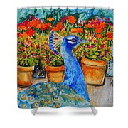 Potted Peacock Shower Curtain
