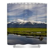 Potters Marsh Summer's Eve Shower Curtain